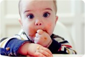 Baby Led Weaning i Autoregulació - Lluna de Llum - Neus Estrada Carreras